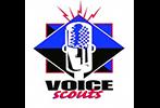 VoiceScouts